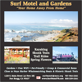 Magazine Ad for Surf Motel and Gardens