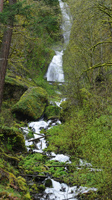 Waterfall along Historic Columbia River Highway