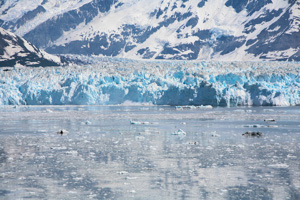 Hubbard Glacier, Alaska. You can see a calving event just left of the center.
